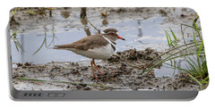 Three-banded Plover Portable Battery Charger
