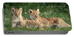 Three Cute Lion Cubs In Kenya Africa Grasslands Portable Battery Charger