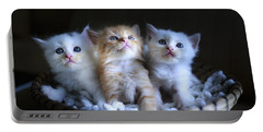 Three Little Kitties Portable Battery Charger