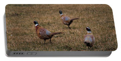 Three Rooster Pheasants  Portable Battery Charger