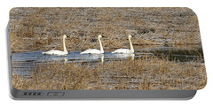 Three Trumpetor Swans 0629 Portable Battery Charger