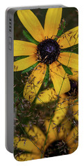 Portable Battery Charger featuring the photograph Through The Meadow Grasses by Dale Kincaid