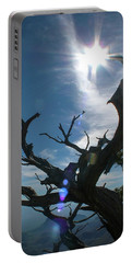 Portable Battery Charger featuring the photograph Tree At Big Bend National Park by Philip Rispin