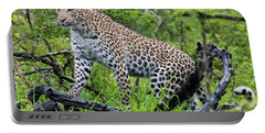 Tree Climbing Leopard Portable Battery Charger