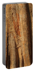 Tree Trunk And Bark Of Chambak Portable Battery Charger