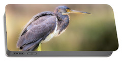 Tricolored Heron Of Brazos Bend State Park Portable Battery Charger