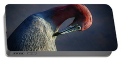 Tricolor Preening Portable Battery Charger
