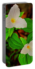 Trilliums Portable Battery Charger