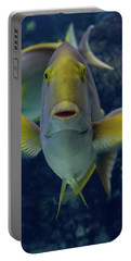 Portable Battery Charger featuring the photograph Tropical Fish Poses. by Anjo Ten Kate