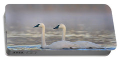 Trumpeter Swans, Magness Lake, Arkansas Portable Battery Charger