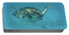 Turtle Approaching Portable Battery Charger