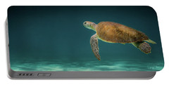 Turtle Blues Portable Battery Charger