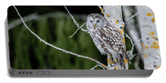 Ural Owl Perching On An Aspen Twig Portable Battery Charger