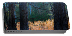 Portable Battery Charger featuring the photograph Verticals And Horizontals by Philip Rispin