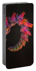 Vibrant Arc Portable Battery Charger