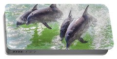 Wake Surfing Dolphin Family Portable Battery Charger