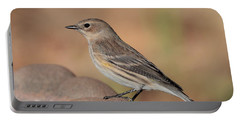 Warbler 4231 Portable Battery Charger
