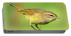 Portable Battery Charger featuring the photograph Warbler by Debbie Stahre