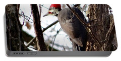 Warypileated Portable Battery Charger