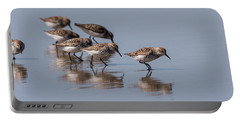 Western Sandpipers And Reflection Portable Battery Charger
