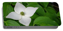 White Dogwood Flower  Portable Battery Charger