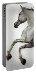 Portable Battery Charger featuring the photograph White Horse Rearing Up by Dimitar Hristov
