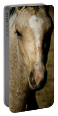 Wild Mustangs Of New Mexico 5 Portable Battery Charger