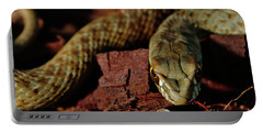 Wild Snake Malpolon Monspessulanus In A Tree Trunk Portable Battery Charger