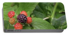 Wildly Fruity Portable Battery Charger