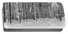 winter forest, Harz Portable Battery Charger