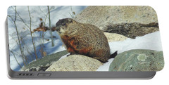 Winter Groundhog Portable Battery Charger