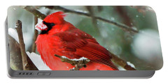 Winter Red Bird - Male Northern Cardinal With A Snow Beak Portable Battery Charger
