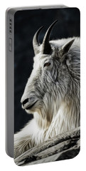 Portable Battery Charger featuring the photograph Wisdom From Up High by Brad Allen Fine Art
