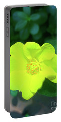 Yellow Hypericum - St Johns Wort Portable Battery Charger