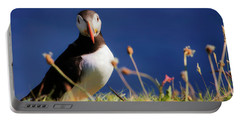 You Lookin' At Me - Atlantic Puffin - Staffa Portable Battery Charger