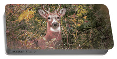 Portable Battery Charger featuring the photograph Young Buck Portrait by Dan Sproul