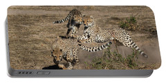 Young Cheetahs Portable Battery Charger
