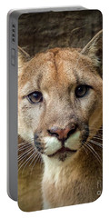 Young Puma Portable Battery Charger