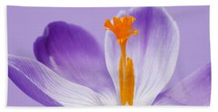 Abstract Purple Crocus Beach Sheet