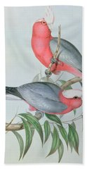 Birds Of Asia Beach Towel