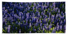 Bluebonnets In The Limelight Beach Towel