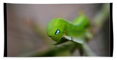 Beach Towel featuring the photograph  Caterpillar by Michelle Meenawong