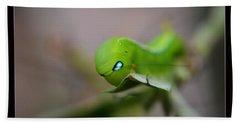 Caterpillar Beach Towel by Michelle Meenawong