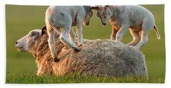 Leap Sheeping Lambs Beach Towel