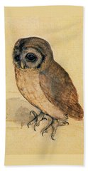 Little Owl Beach Sheet by Albrecht Durer