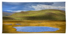 Patagonian Lakes Beach Sheet