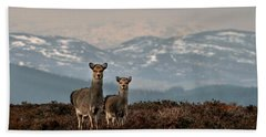 Sika Deer Beach Towel