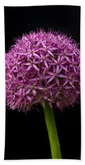 Single Purple Allium Beach Sheet