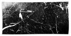 Beach Sheet featuring the photograph  Spidernet by Yulia Kazansky