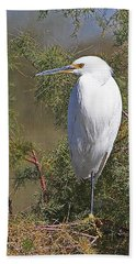 Yellow Foot Snowy Egret On Perch Beach Sheet by Tom Janca